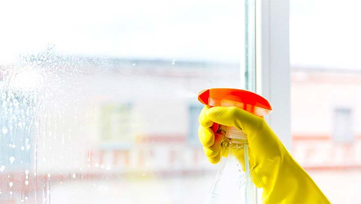 Cleaning Services - Window Cleaning
